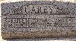 Edgar Nichols Carey