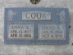 David Clarence Cook