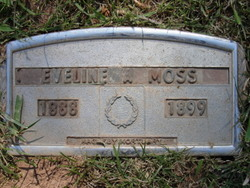 Eveline Albertina Moss