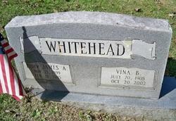 Vina Jane <I>Boring</I> Whitehead