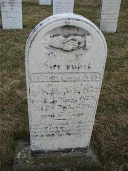Henry W. Shantz
