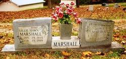 Lillie <I>Hawn Marshall</I> Allison