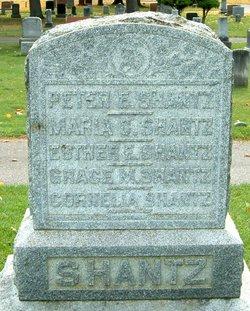 Peter Erb Shantz