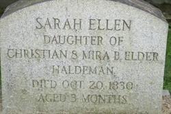 Sarah Ellen Haldeman