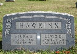 Lewis Daniel Hawkins