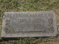 Dr Lee Adrian Adams