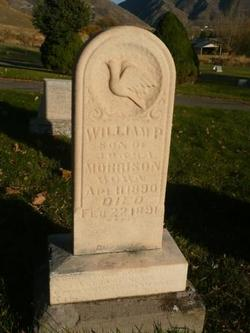 William P Morrison