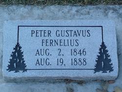 Peter Gustavus Fernelius