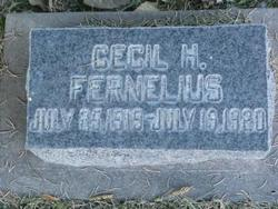 Cecil Heber Fernelius