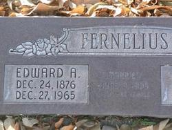 Edward Adolph Fernelius