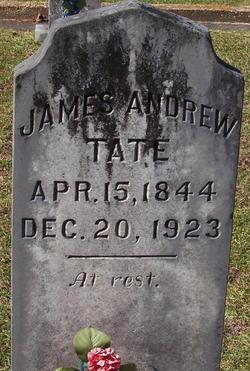 James Andrew Tate