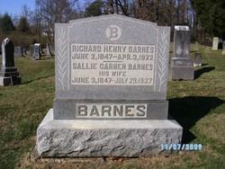 Sallie Garner <I>Barnard</I> Barnes