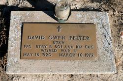 David Owen Felter
