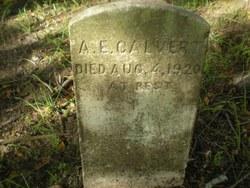 Anne E. Calvert