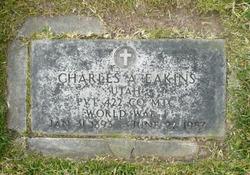 Charles Alexander Eakins, Sr
