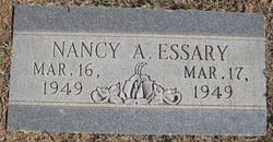 Nancy Ann Essary