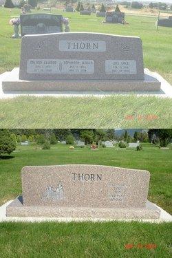Millie Sophrona <I>Jensen</I> Thorn