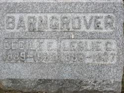 Cecile E. <I>Welch</I> Barngrover