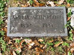 Amelia <I>Murphy</I> Nethercott