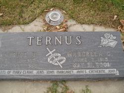 Maurice H Ternus