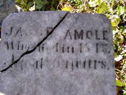 Jacob Amole