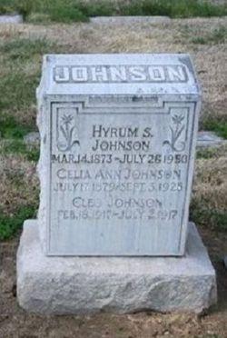 Hyrum Stephen Johnson