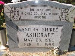 Anitra Shiree Ashcraft