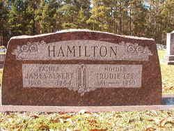 James Albert Hamilton