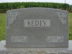 Alexander G Kedey