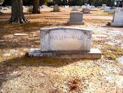 Adlai Cornwell Holler