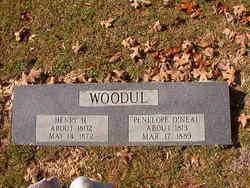 Henry H Woodul