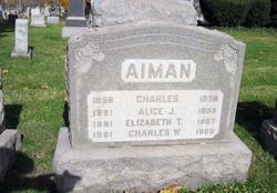 Alice J. <I>Travis</I> Aiman