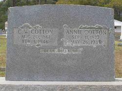 Annie <I>Taylor</I> Cotton