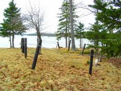 Reversing Falls Cemetery