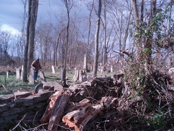 Poplar Run Baptist Cemetery