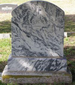 William Herman Mercer