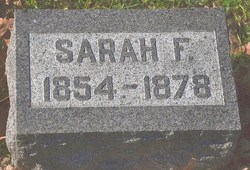 Sarah F <I>David</I> Adams