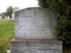 Charles Alva Bibber