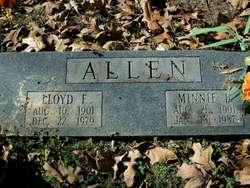 Minnie L <I>Eisenhardt</I> Allen