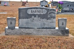 Mary Olive Barnes