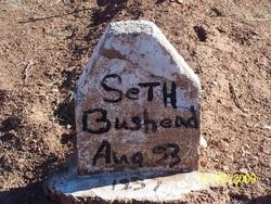 Seth Bushhead