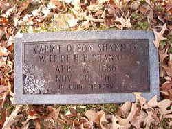 Carrie Lee <I>Olson</I> Shannon