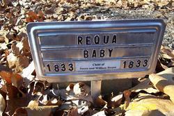 Baby Requa