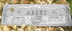 """Elizabeth Ann """"Liz"""" <I>Danielson</I> Abbey"""