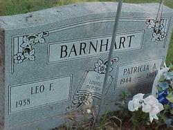 Patricia Ann <I>Earp</I> Barnhart
