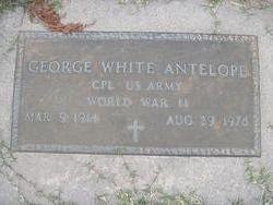 George White Antelope