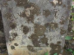 Elvira Jane <I>Cotton</I> Adams