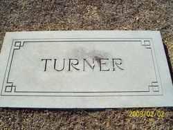 Robert William Turner