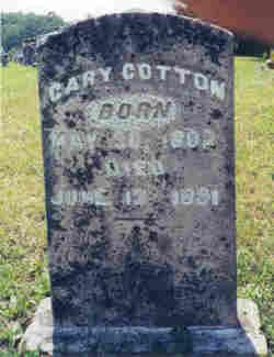 Cary Cotton