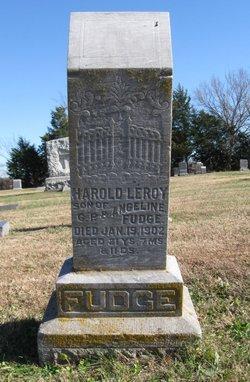Harold Leroy Fudge